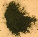 Chlorella gemahlen