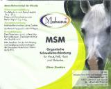 MSM 99,9% rein