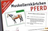 Lernkarten zur Muskulatur des Pferdes