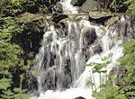 Rock Water - Wildwasser